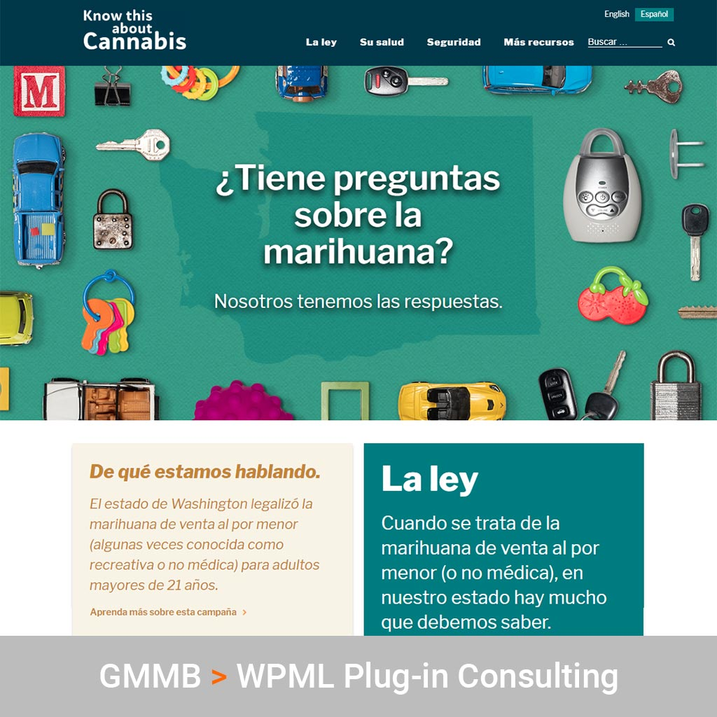 WPML Plug-In Technology Consulting for GMMB